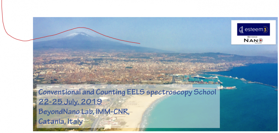 Conventional and Counting EELS spectroscopy school