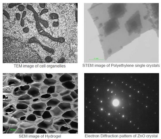 Corso Base integrato di microscopia confocale e microscopia elettronica TEM/STEM-4