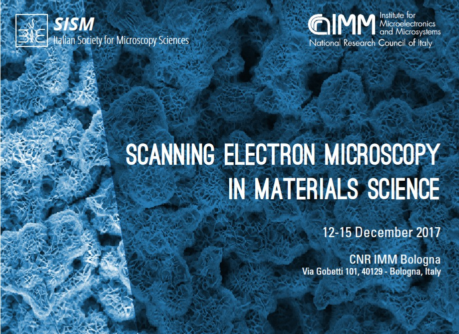 SCANNING ELECTRON MICROSCOPY IN MATERIALS SCIENCE